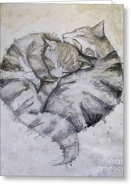 Snuggling Grey Cats Greeting Card