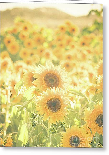 Soak Up The Sun Greeting Card