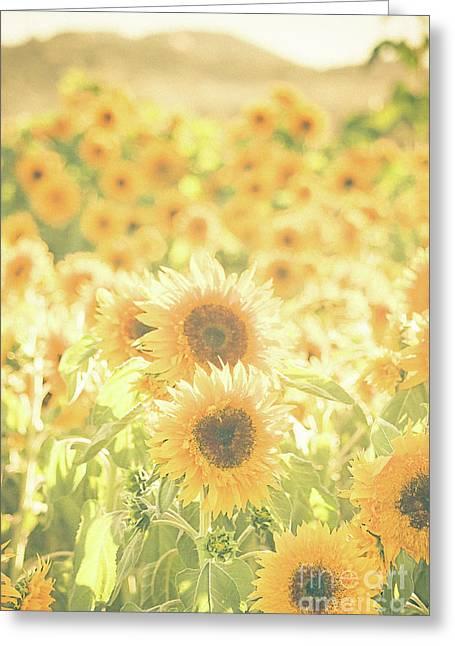 Soak Up The Sun Greeting Card