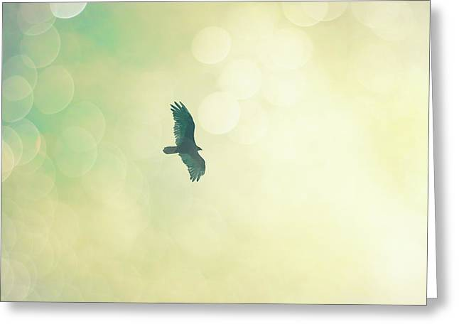 Greeting Card featuring the photograph Soar by Melanie Alexandra Price