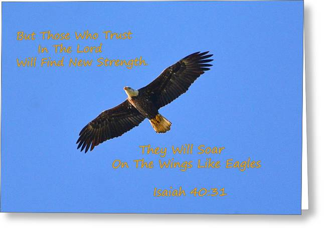 Soar On The Wings Like Eagles Isaiah 40 31  Greeting Card