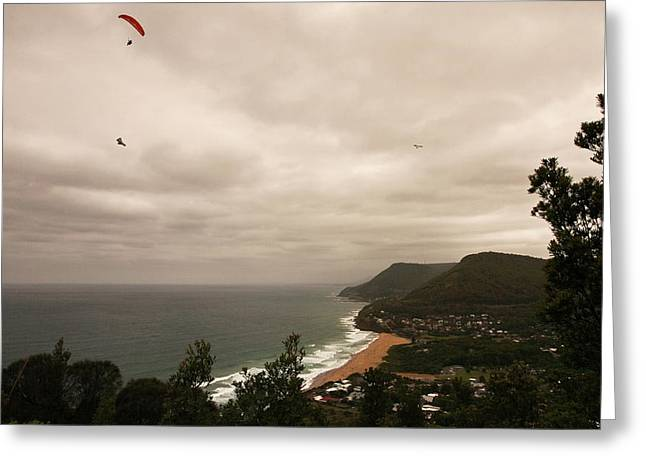 Greeting Card featuring the photograph Soaring by Odille Esmonde-Morgan