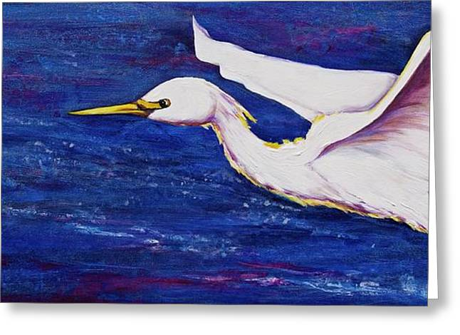Soaring Over Egret Bay Greeting Card by Debi Starr