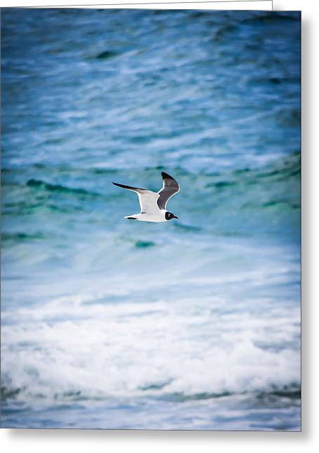 Soaring Over The Ocean Vertical Greeting Card by Shelby Young