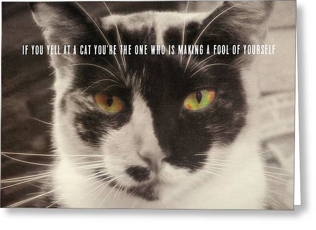 Socks Quote Greeting Card by JAMART Photography