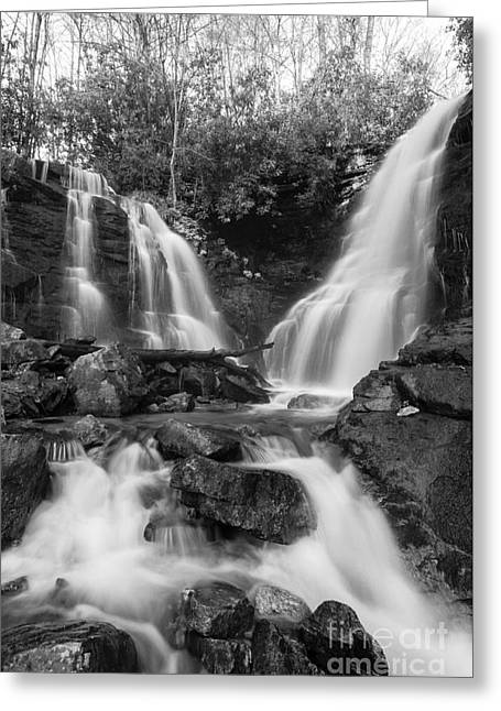 White And Black Waterfalls Greeting Cards - Soco Falls - D009628-bw Greeting Card by Daniel Dempster