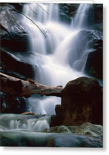 Soft And Silky - Boney Mountain State Wilderness Greeting Card by Soli Deo Gloria Wilderness And Wildlife Photography