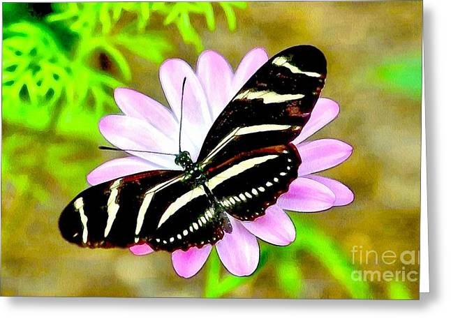 Soft And Wet Bwr Butterfly  Greeting Card by Catherine Lott