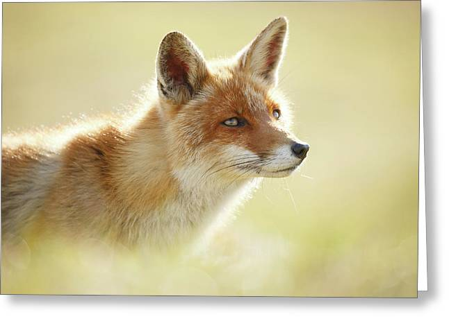 Soft Fox Greeting Card by Roeselien Raimond