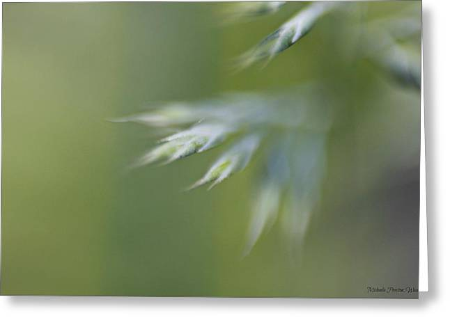 Greeting Card featuring the photograph Soft Green by Michaela Preston