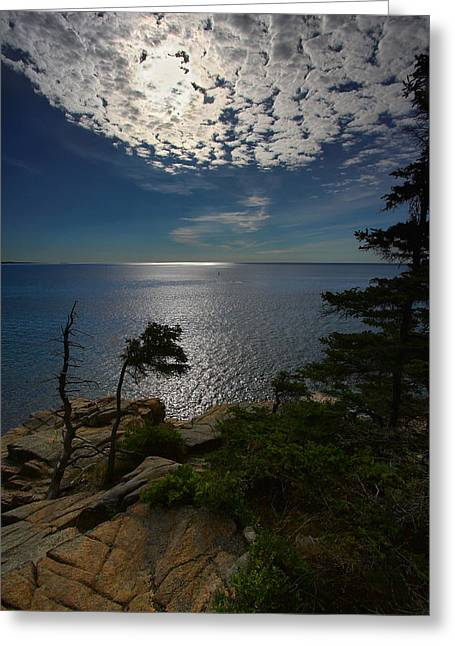 Soft Light On Otter Point Greeting Card