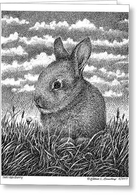 Soft Little Bunny Greeting Card
