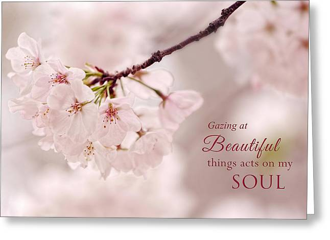 Soft Medley With Message Greeting Card