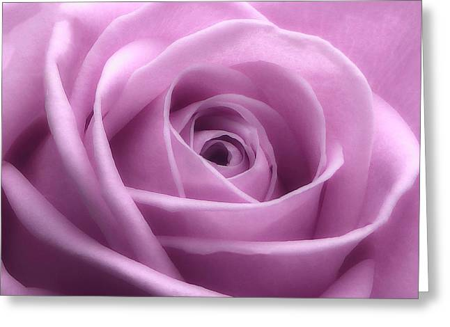 Soft Pink Beauty 3 Greeting Card