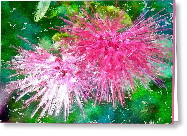 Soft Pink Flower Greeting Card by Joan Reese