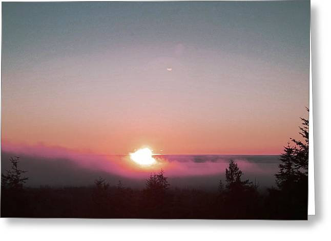 Soft Pink Fog Greeting Card