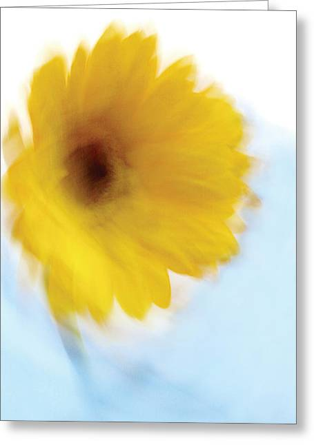 Soft Radiance Greeting Card