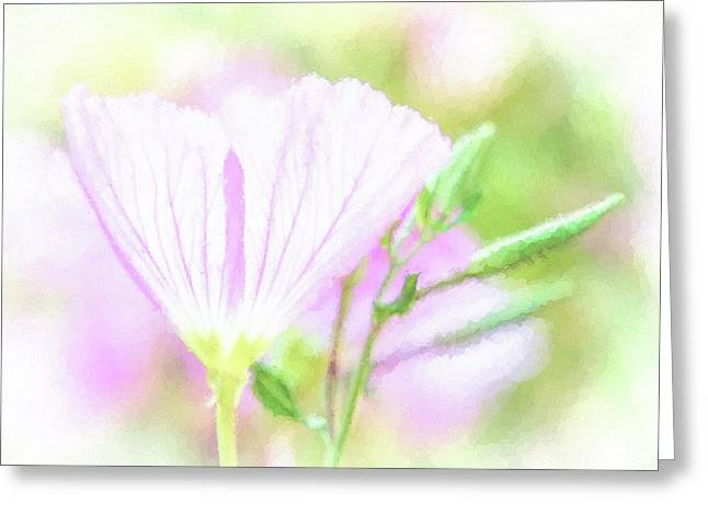 Soft Seurat Pink Greeting Card by Terry Davis