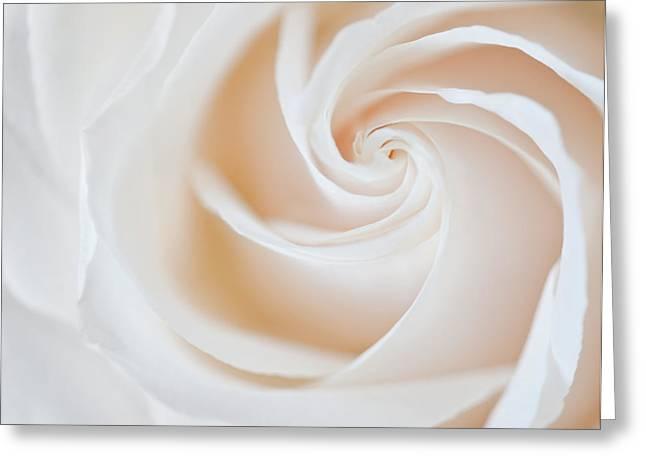 Soft Swirls Greeting Card by Susan Candelario
