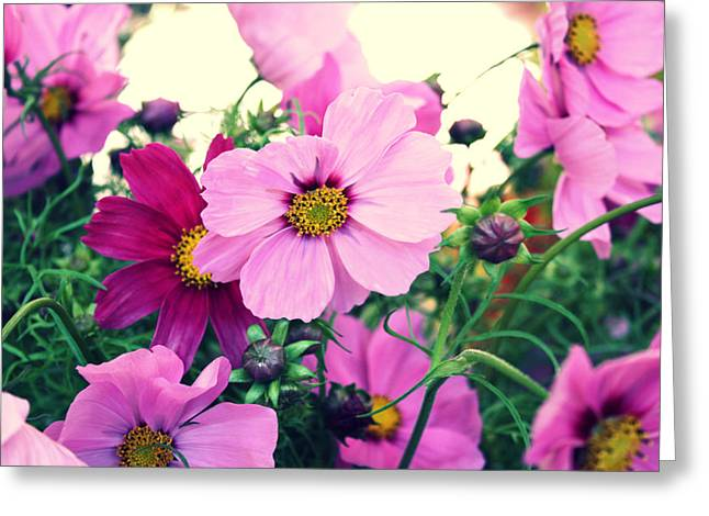 Softly Blowing Greeting Card by Cathie Tyler