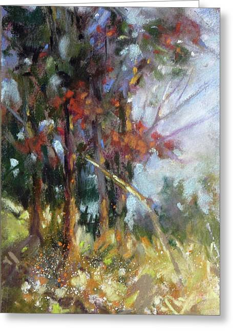 Softly, Softly Greeting Card by Rae Andrews