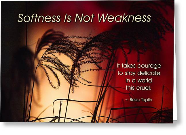 Softness Is Not Weakness Greeting Card by Mike Flynn