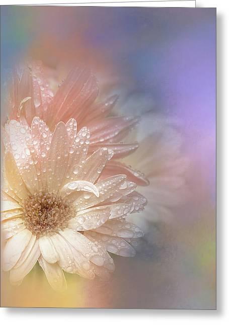 Softness Receding Greeting Card