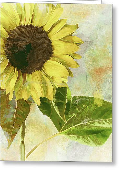 Soleil I Redux Greeting Card by Mindy Sommers