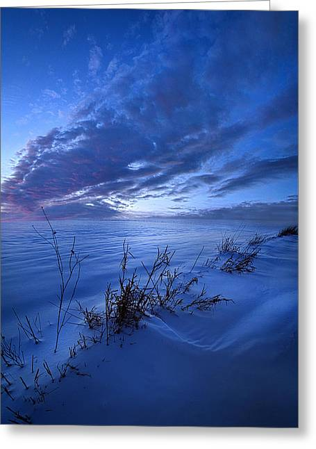 Solitaire Moments Dressed In Blue Greeting Card by Phil Koch