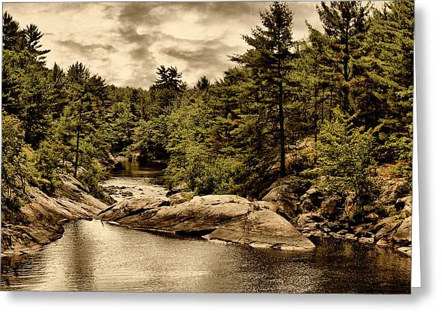 Solitary Wilderness Greeting Card