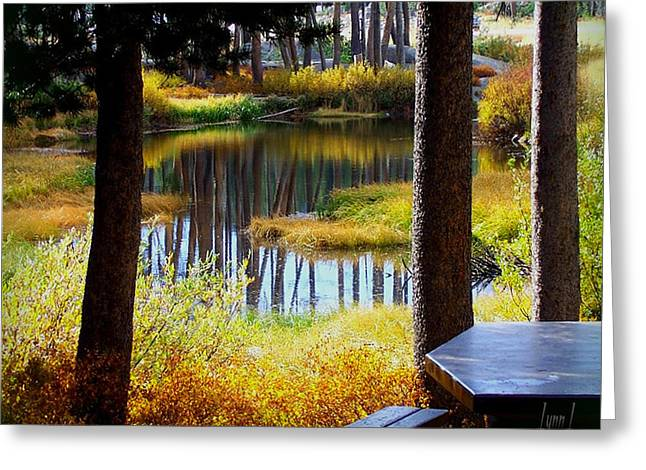 Solitude At Donner Pass Greeting Card by S Lynn Lehman