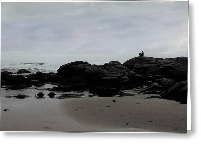 Solitude At Goose Rocks Greeting Card