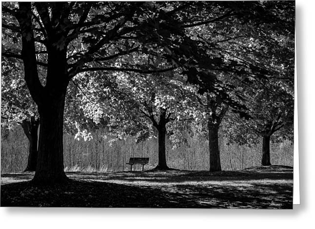 Solitude Bench Black And White Greeting Card by Terry DeLuco