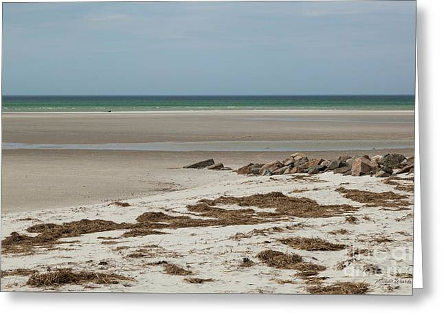 Greeting Card featuring the photograph Solitude By The Seashore by Michelle Wiarda
