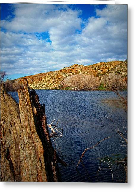 Solitude Greeting Card by Glenn McCarthy Art and Photography