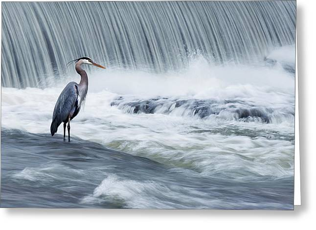 Solitude In Stormy Waters Greeting Card by Mircea Costina Photography