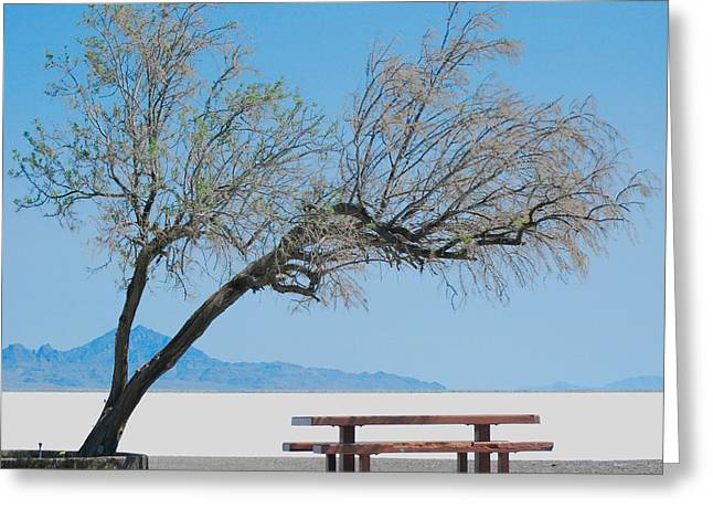 Solitude Greeting Card by Maggy Marsh