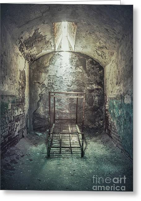 Solitude Of Confinement Greeting Card by Evelina Kremsdorf
