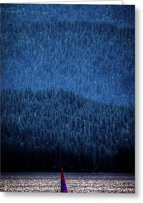 Greeting Card featuring the photograph Solitude On Priest Lake by David Patterson