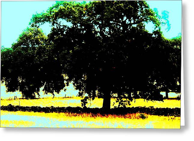 Solitude Greeting Card by Tim Tanis