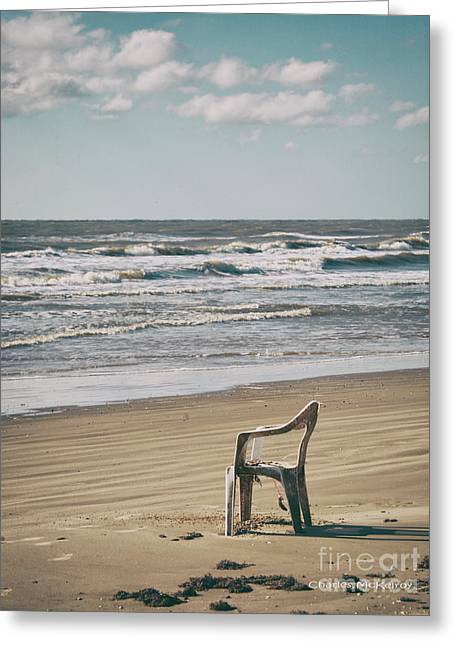 Greeting Card featuring the photograph Solo On The Beach by Charles McKelroy