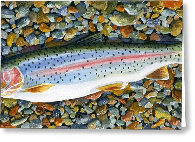 Solotrout Greeting Card by Mark Jennings