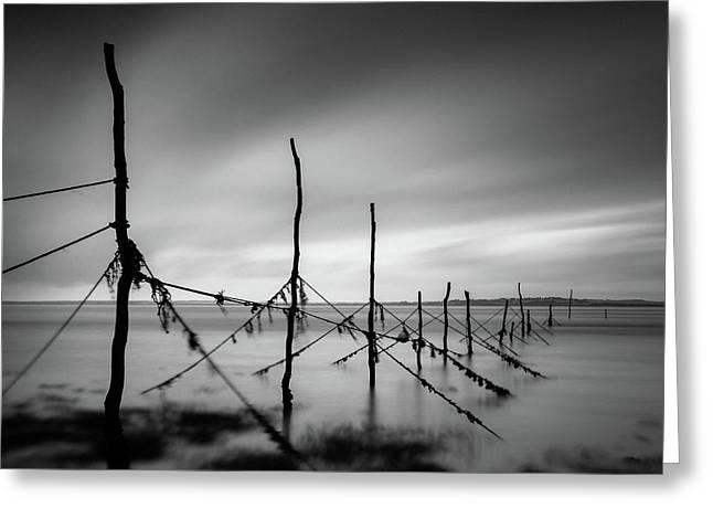 Solway Firth Fishing Nets Greeting Card by Dave Bowman
