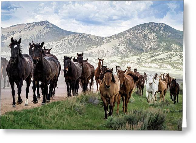 Sombrero Ranch Horse Drive, An Annual Event In Maybell, Colorado Greeting Card
