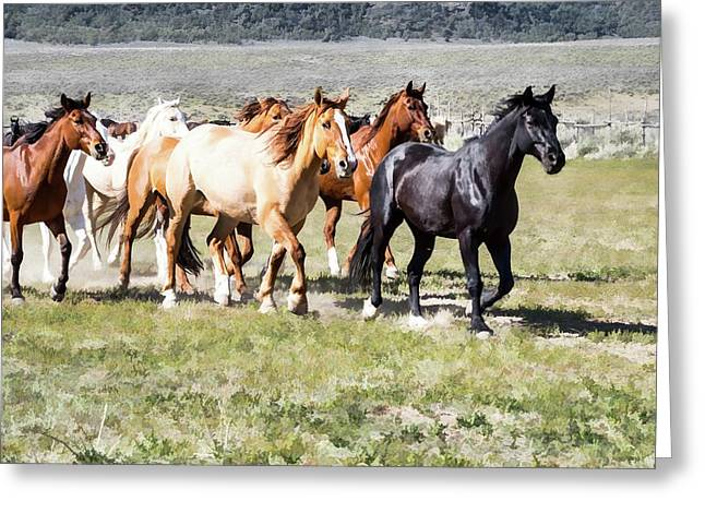 Greeting Card featuring the digital art Sombrero Ranch Horse Drive, Galloping Horses by Nadja Rider
