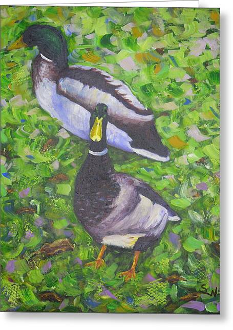 Somerset Ducks Greeting Card