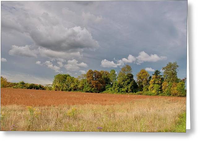 Greeting Card featuring the photograph Somerset Sky 3069 by Guy Whiteley