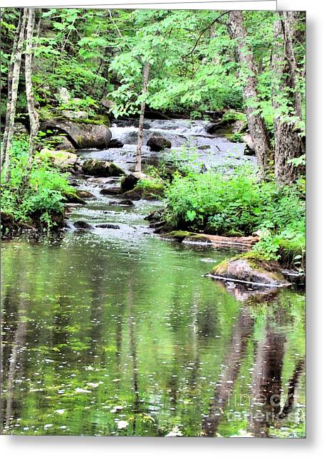 Somesville Stream  Greeting Card