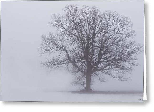Sometime We Need The Fog Greeting Card