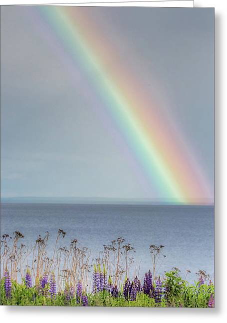 Somewhere Under The Rainbow Greeting Card
